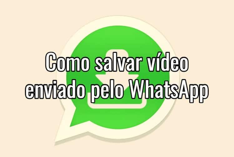 Saiba como baixar fotos e vídeos do WhatsApp