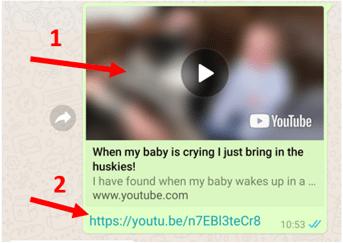 assistir video whatsapp