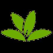 app identificador planta