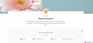 Site para upload de imagens de plantas - Bing