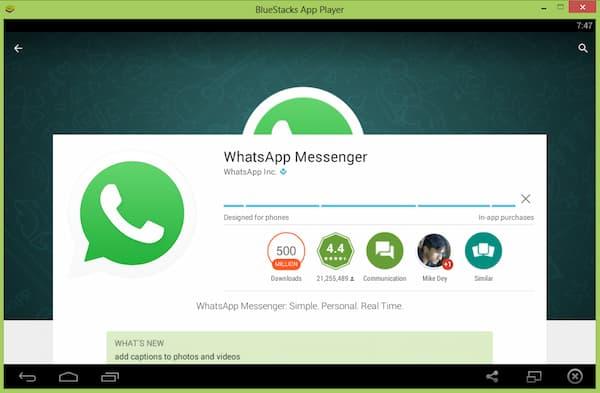 WhatsApp no Bluestacks